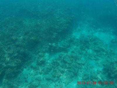 Podmorská socha morskej víly