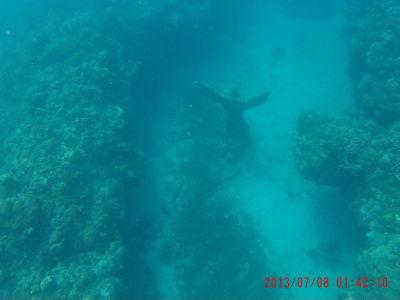 Podmorská socha Ježiša