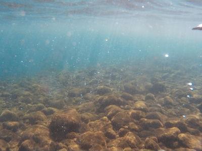 Bublinky unikajúceho plynu na morskom dne na Bubble Spa Beach