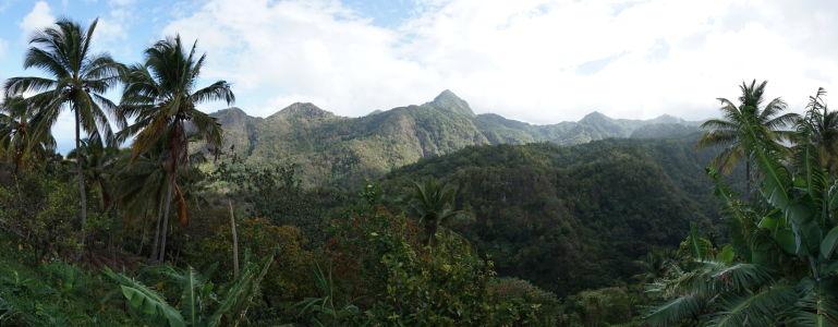 Bujná vegetácia a hory ostrova Svätá Lucia