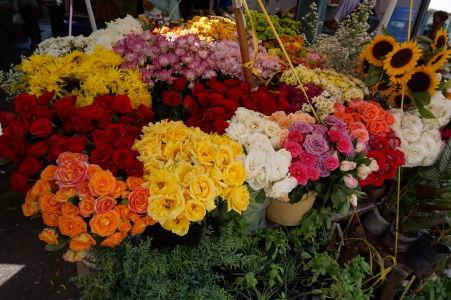 Kvetiny na tržnici v São José
