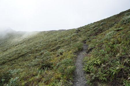 Okraj krátera sopky La Soufrière na Svätom Vincentovi a cestička k nemu vedúca