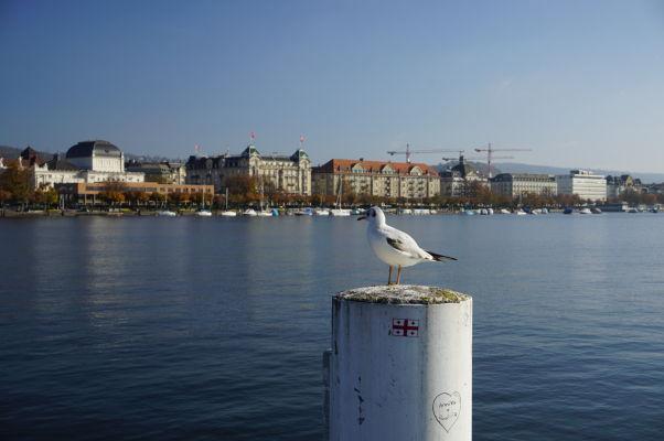Nábrežie Zürišského jazera v Zürichu