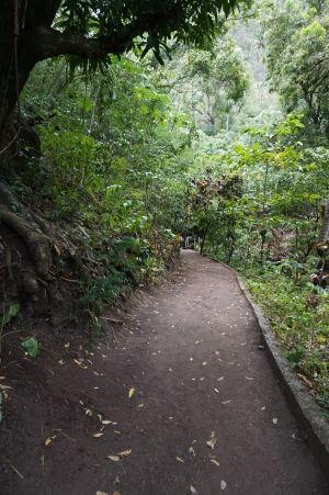 Chodníček k teplému vodopádu Piton Falls