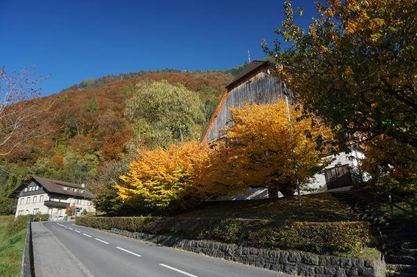 Domy v okolí hradu Vaduz
