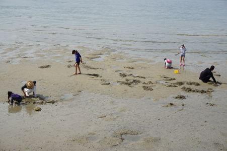 Ľudia hľadajúci mušle na pláži v Icukušime