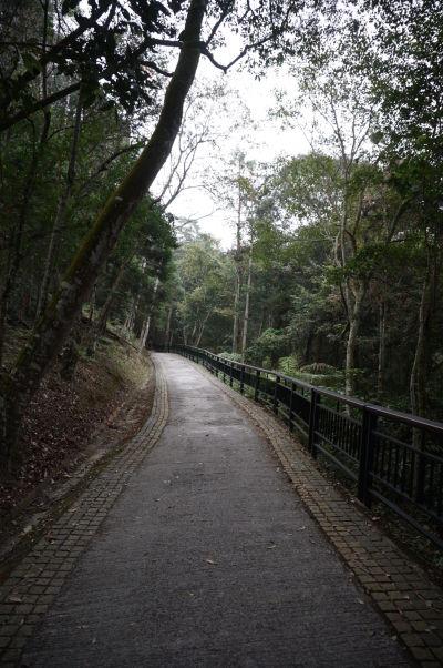 Pešia cestička popri Jazere Slnka a Mesiaca (Sun Moon Lake) na Taiwane