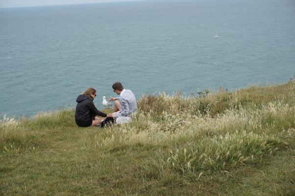 Piknik na útese Amont pri Étretate sa nezaobíde bez spoločnosti čajok