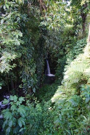 Vodopád Jacko Falls v krásne zelenej prírode Dominiky