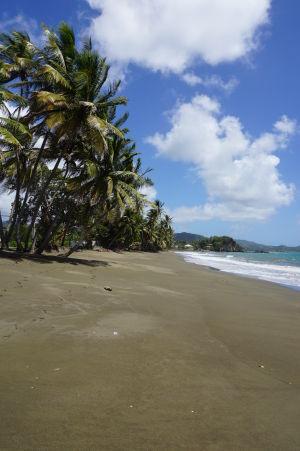 Princes Bay - jedna z nespočetných pláží na juhu ostrova