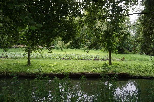 Plávajúce záhrady Les Hortillonnages v Amiens
