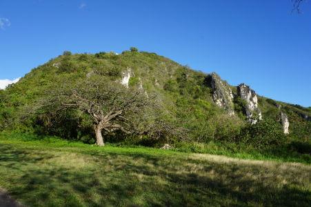 Kopec Brimstone Hill