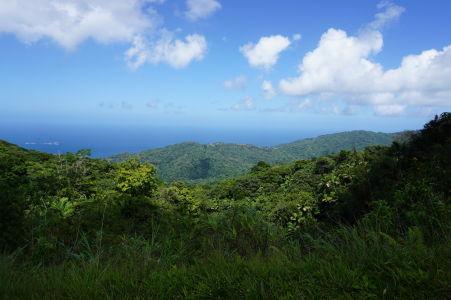 Výhľad na more z kopca