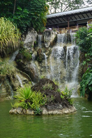 Voda je dôležitým elementom botanickej záhrady