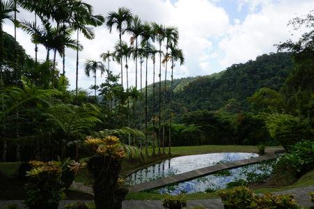 Botanická záhrada Jardin de Balata na Martiniku