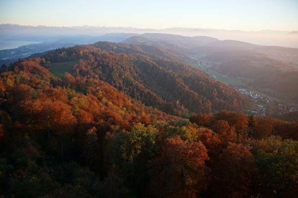 Výhľad na okolité kopce z vrcholu Uetlibergu