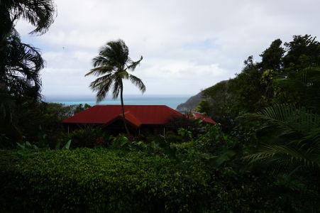 Výhľad k pobrežiu z botanickej záhrady