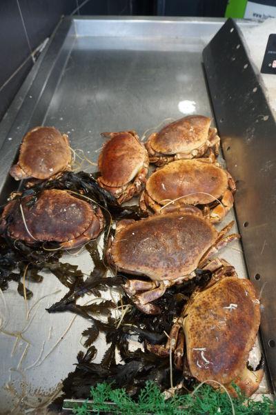 Na tržnici Les Halles v Amiens zakúpite i čerstvé ryby a dary mora
