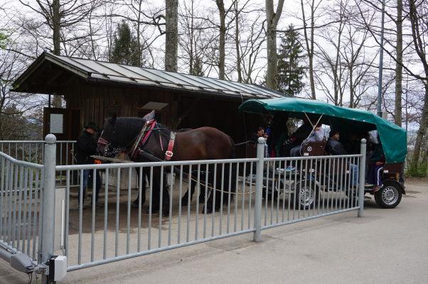 Hrad Neuschwanstein - pokiaľ sa vám dolu z dediny nechce pešo, môžete využiť kone