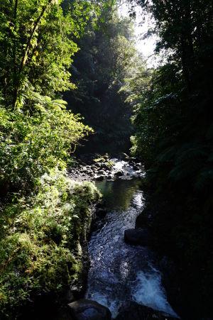 Potôčik odtekajúci od ústia vodopádu