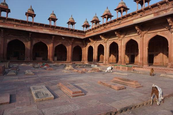 Piatková mešita (Jama Masjid) vo Fatehpur Sikri - hroby a kozy