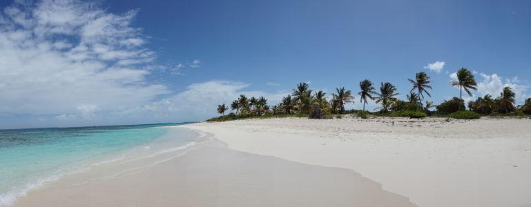 Dokonalá pláž v Shoal Bay