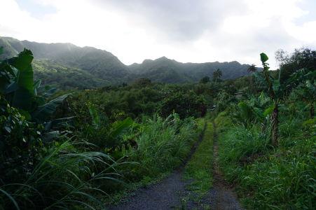 Prejazd horami stredom Grenady