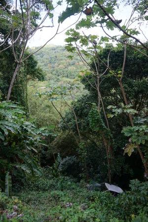 Prejazd horami stredom Grenady - Niekto tu už pomerne dlho parkuje