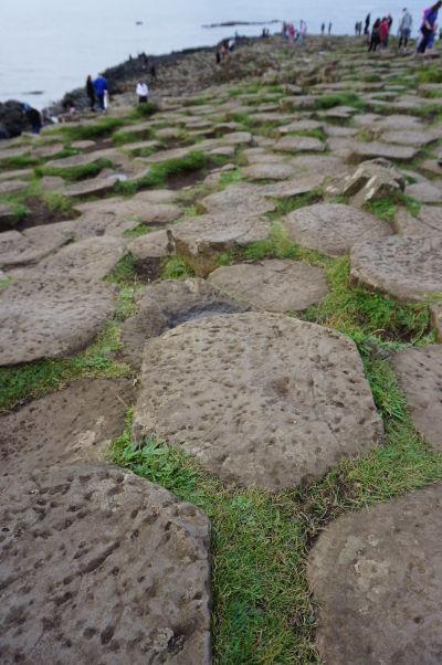 """Bazalt (stuhnutá láva) formujúci """"včelie plasty"""" na Obrovom chodníku (Giant's Causeway) v Severnom Írsku"""