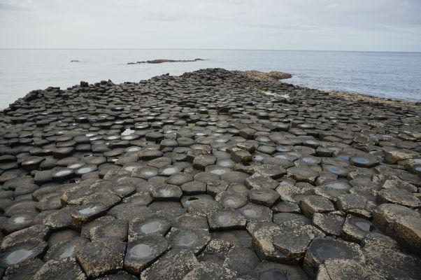 """Bazalt formujúci """"včelie plasty"""" na Obrovom chodníku (Giant's Causeway) v Severnom Írsku"""