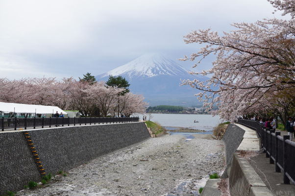 Sopka Fudži pri pohľade od jazera Kavaguči