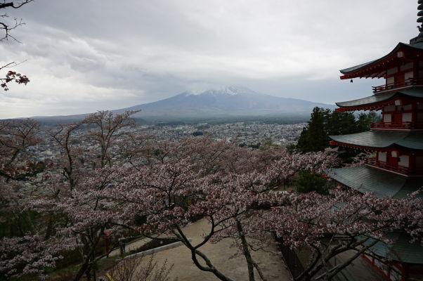 Výhľad na horu Fudži spoza pagody Čureito