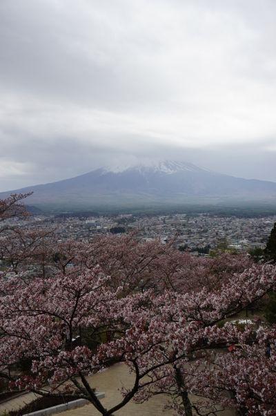 Výhľad na horu Fudži od pagody Čureito