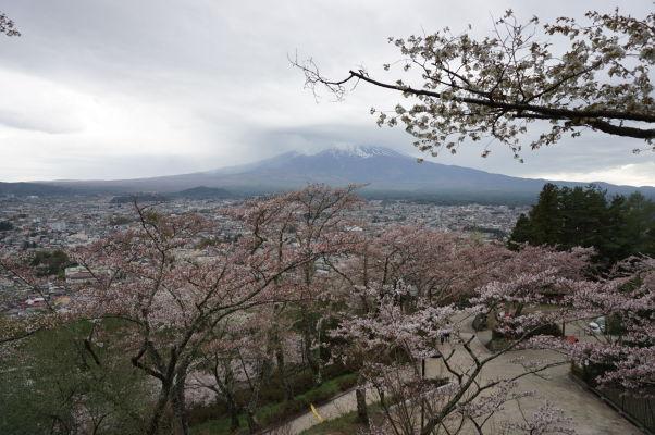 Výhľad na horu Fudži z kopca pod pagodou Čureito