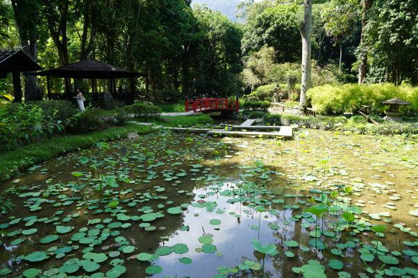 Botanická záhrada v Riu de Janeiro