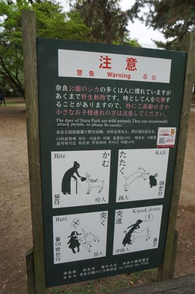 Tabuľa varujúca pred tým, čoho všetkého sú malé drzé jelene v Nare schopné