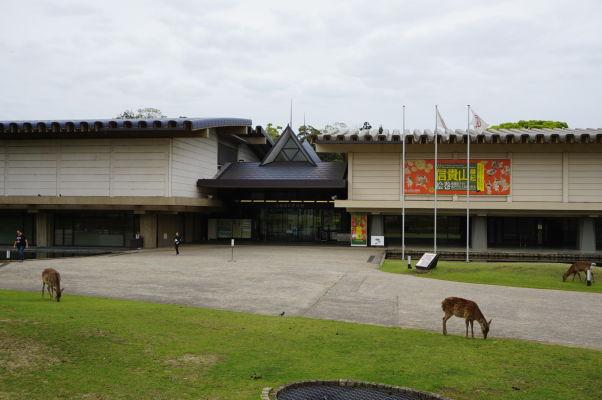 Národné múzeum v Nare