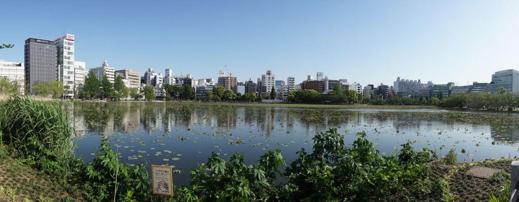 Jazero Šinobazu v parku Ueno v Tokiu