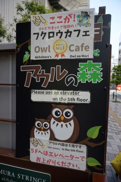 Sovia kaviareň Auru no Mori v štvrti Akihabara v Tokiu