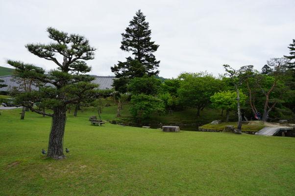 Park Nara, v ktorom leží niekoľko dôležitých chrámov
