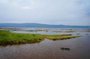 Jazero Nakuru
