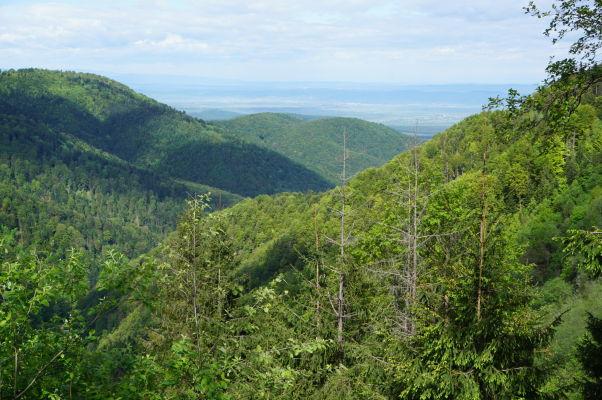 Hory Transylvánie (rumunských Karpát) v okolí Transfagarašanu