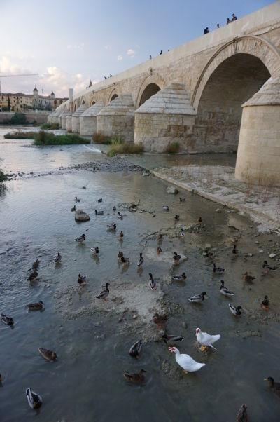 Rímsky most v Córdobe
