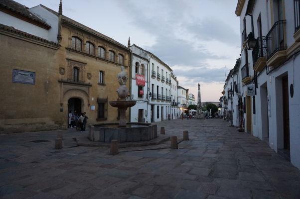 Námestie Plaza del Potro v Córdobe, vľavo budova Múzea výtvarného umenia