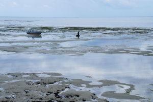 Pri odlive sú pláže na Zanzibare trošku menej lákavé