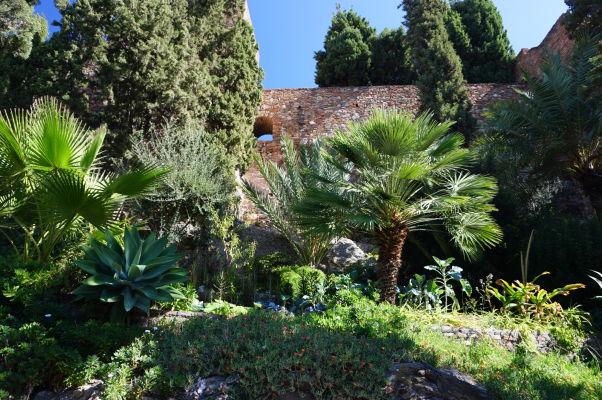 Pevnosť Alcazaba v Málage sa topí v zeleni