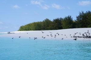 Zanzibar je v skutočnosti súostrovie, toto je jeden z menších ostrovčekov