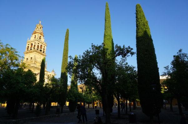 Nádvorie pomarančovníkov a veža (bývalý minaret) Mezquity v Córdobe