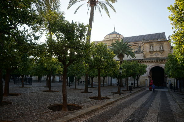 Nádvorie pomarančovníkov a Mezquita v Córdobe