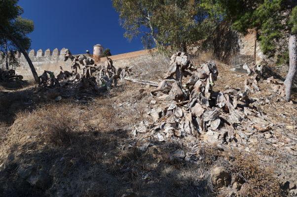 Hradby pevnosti Gibralfaro a suché opuncie